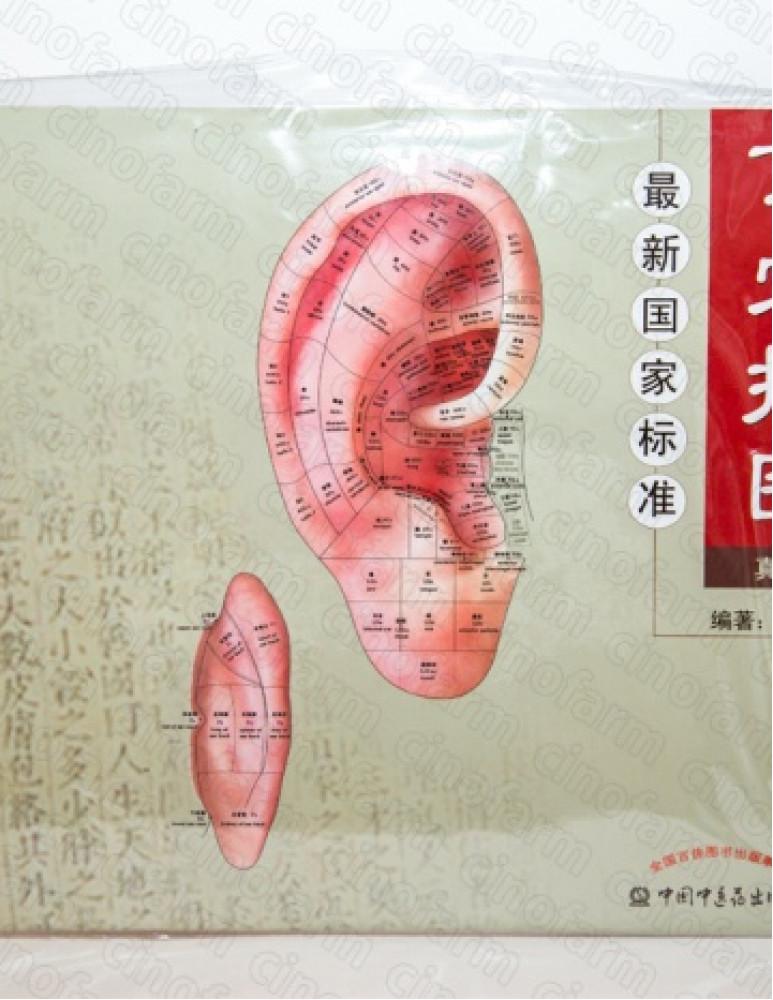 Плакат Ухо с книжкой